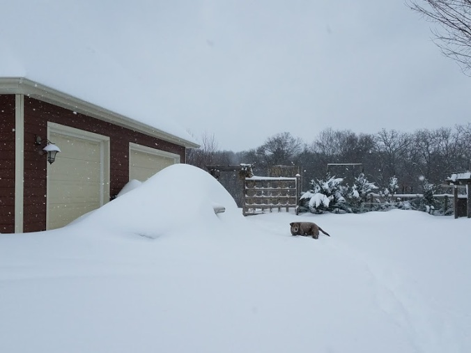 Where's the driveway